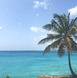 Billig bilutleie & leiebil i Barbados